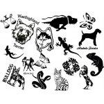 Tiere/Deko/Skulls