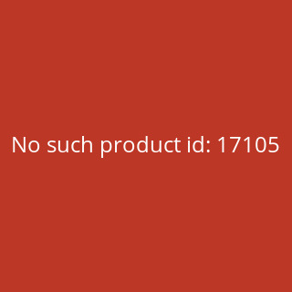 VW Passat Variant B8 (Typ 3G) V2 Car-Art-Kissen / Car-Art-Pillow