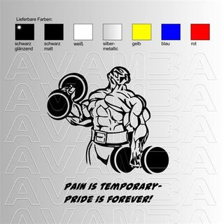 Body Building Pain is temporary... Aufkleber Sticker